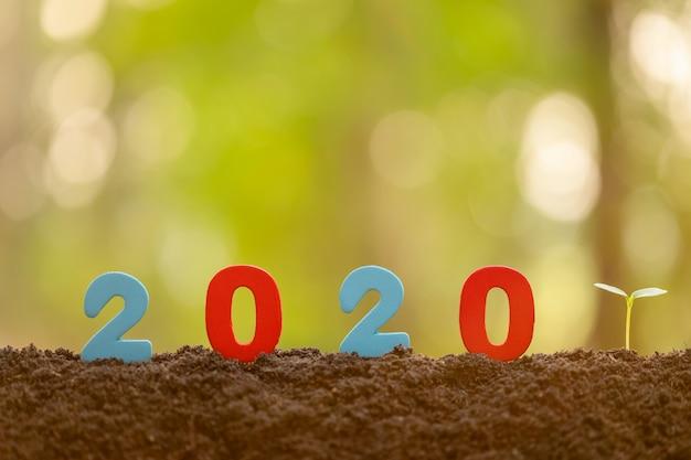 色番号2020と庭の土で成長している緑の若い木芽背景をぼかし