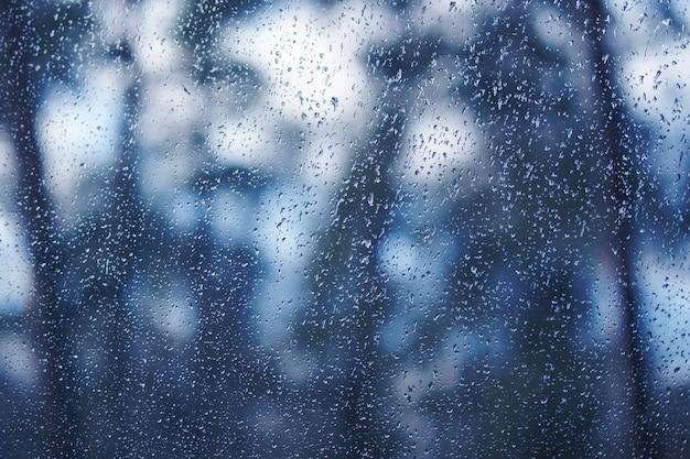 Вода падает на окно. вид из окна на лес, лес, сад. фон тонированный в модный цвет 2020 классический синий.
