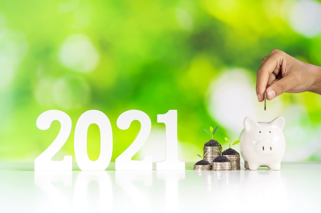 2021 saving growth and business investment concept with piggy bank and green nature
