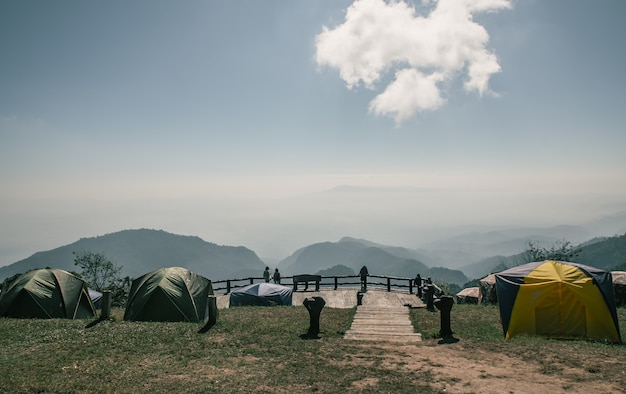 23 november 2020 chiang mai, thailand, camp under a pine forest at mon son view point doi pha hom pok national park, doi ang khang, a natural landmark and popular natural attractions in thailand.