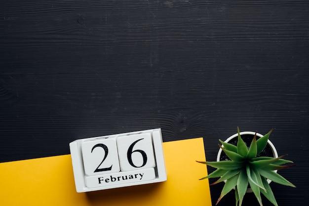 겨울 달 달력 2 월 26 26 일 복사 공간.