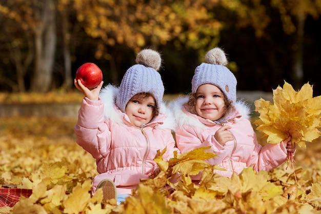 2人の女の子、衣服および帽子の姉妹は、自然の秋の公園で黄色の葉に座っています。