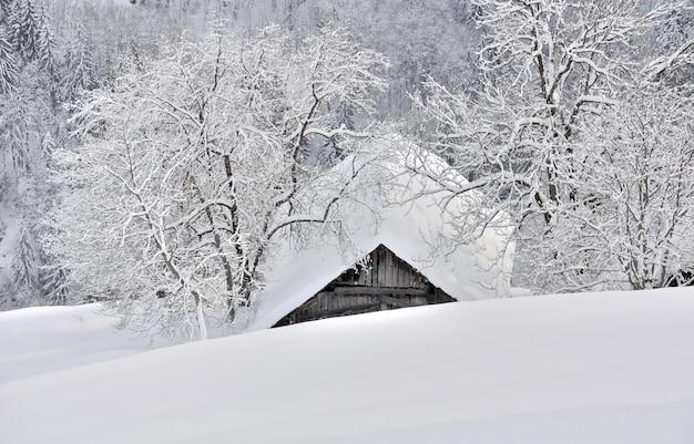アルプスの山に雪で覆われた2本の木の間のコテージの屋根