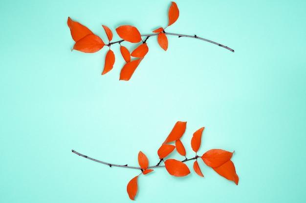 秋の組成、葉のフレーム。赤い葉、梅、明るい青の背景に2つの枝。フラット横たわっていた、トップビュー、コピースペース