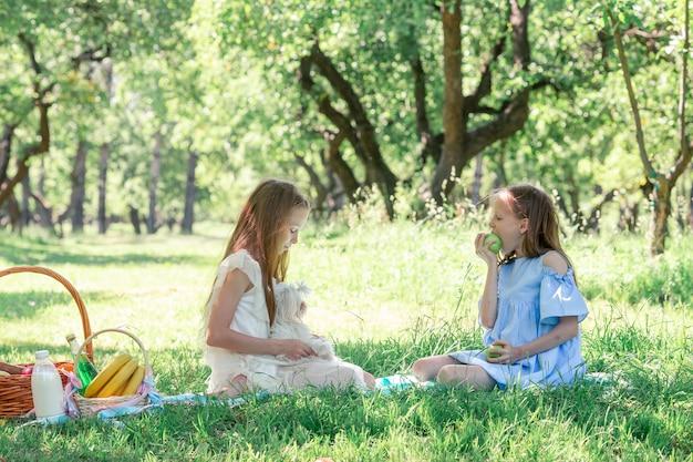 公園でのピクニックに2つの小さな子供たち