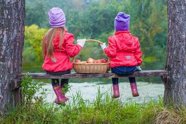 彼らの手に赤いリンゴのバスケットを持つ湖のそばのベンチに2つの美しい姉妹の背面図