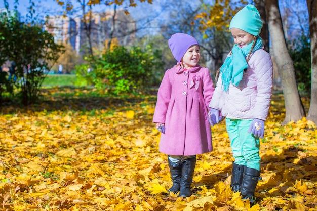 暖かい晴れた秋の日に楽しんで楽しんでいる2人の愛らしい女の子