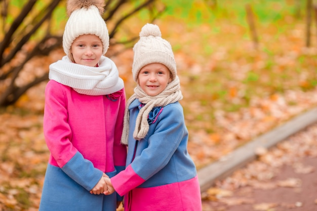暖かい晴れた秋の日に公園で2人の愛らしい女の子