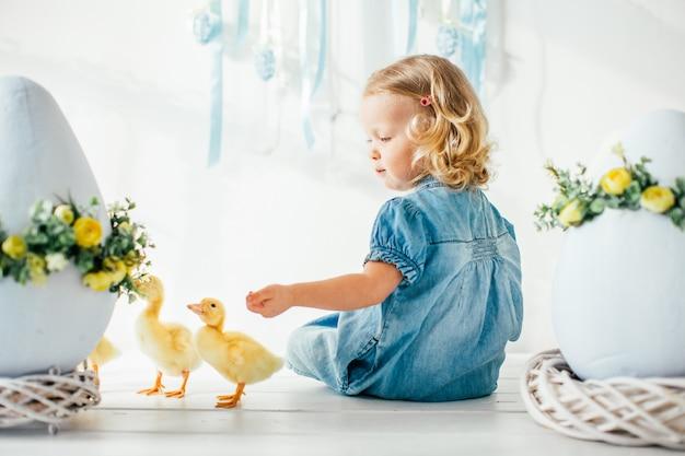 青いドレスと黄色のふわふわのアヒルの子で遊んで、笑っている2つのポニーテールの金髪少女。イースター、春。
