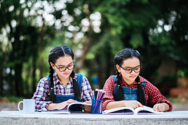 公園内のラップトップとオンラインで一緒に勉強している2人の学生