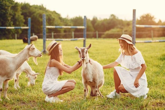 ヤギとフィールドで2つのかわいい女の子