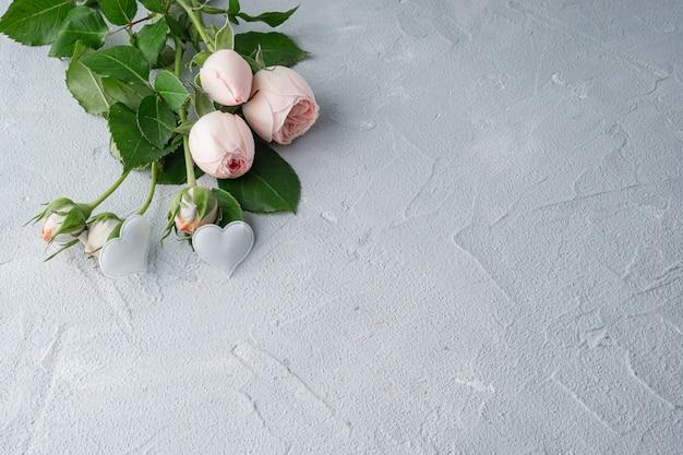 美しい牡丹ふさふさしたピンクのバラと2つの白いハート。バレンタインの日、愛と忠誠心の概念。コピースペース。