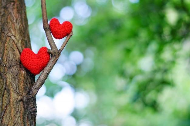 ぼやけている緑の自然に2つの赤いハート