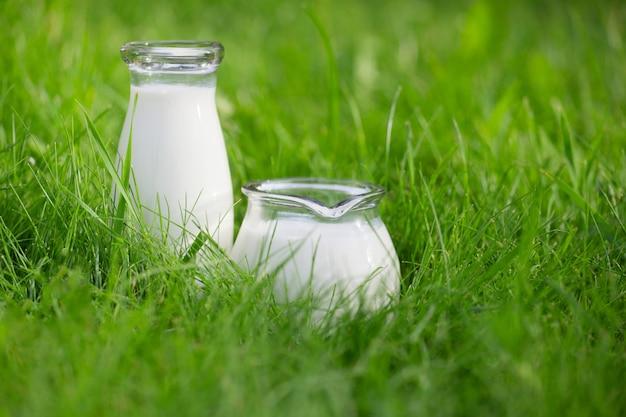 夏の背景の上に新鮮な牛乳の2つのボトル
