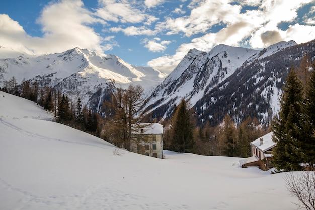 美しい冬の風景。背の高い緑のトウヒの木に囲まれた2つの建物