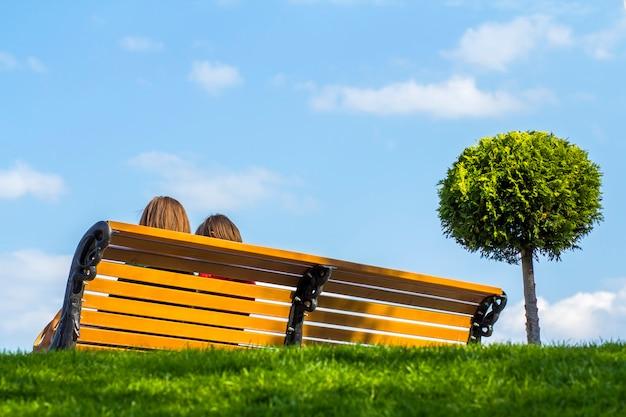 緑の草と小さな木の近くの2人の女の子と木製のベンチ