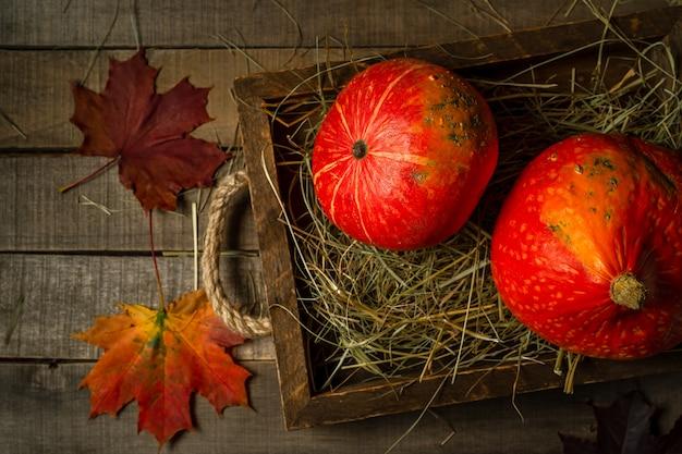 わら、カエデの葉の2つの小さな秋カボチャのトップビュー