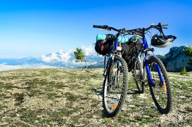 自然の中で2つの自転車