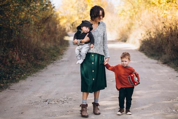 公園を歩いている2人の息子を持つ若い母親
