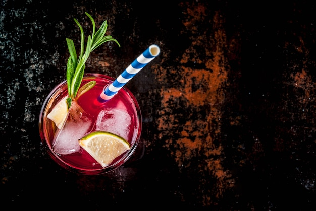 リフレッシュメントアルコール赤クランベリーとライムカクテル、ローズマリーと氷、2つのガラスのトップビュー