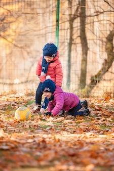 秋の紅葉で遊ぶ2つの小さな女の赤ちゃん