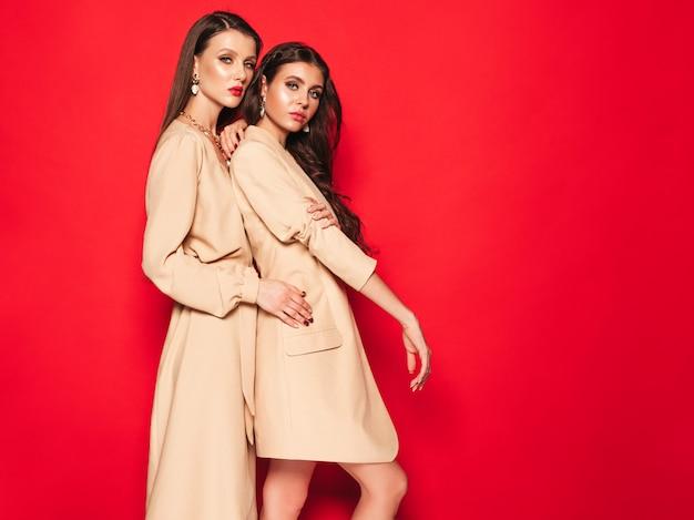 素敵なトレンディな夏服の2つの若い美しいブルネットの少女