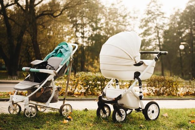 秋の公園で幼児と一緒に歩きます。自然に2つのベビーカー