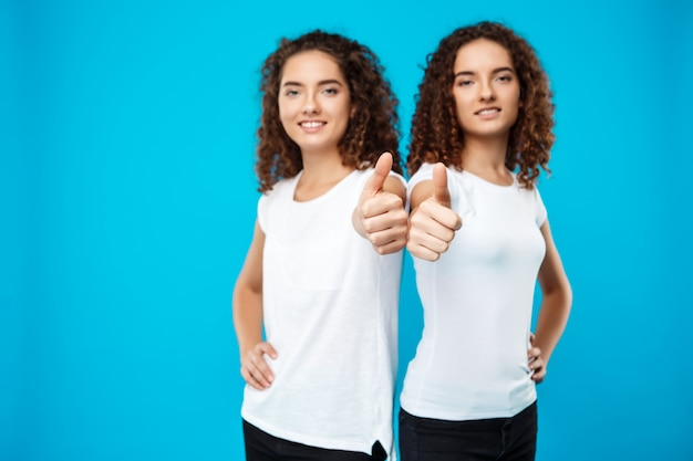 2つのかわいい女の子の双子の笑顔、青い壁の上を示す