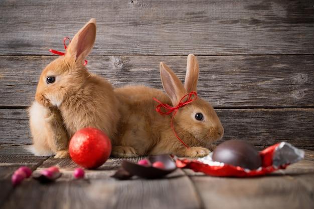 古い木製の背景にチョコレートの卵を持つ2つのウサギ