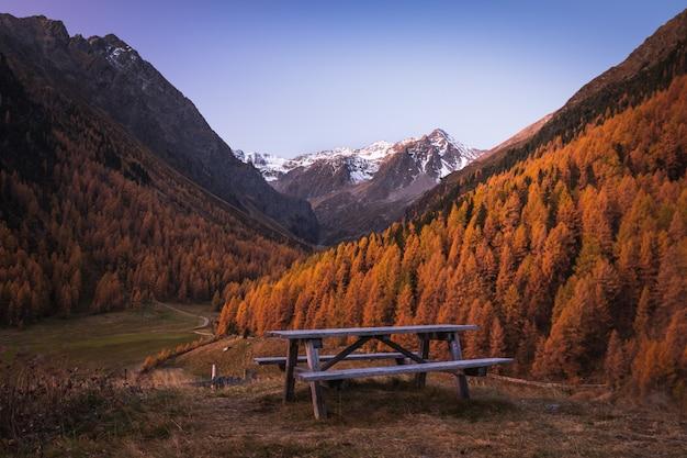 美しい雪に覆われた山々と黄色の木々で覆われた2つの丘の間の木製ベンチ
