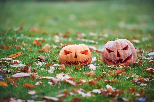 秋の公園で2つのハロウィーンのカボチャ