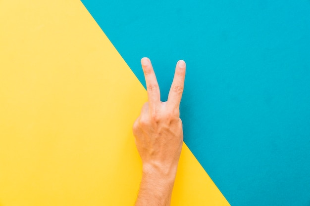 2本の指のジェスチャー
