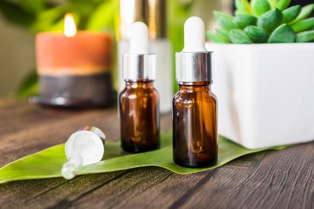 木製のテーブルの上に緑の葉の上に2つの香りのエッセンシャルオイルボトルが付いているポットされたサボテン植物