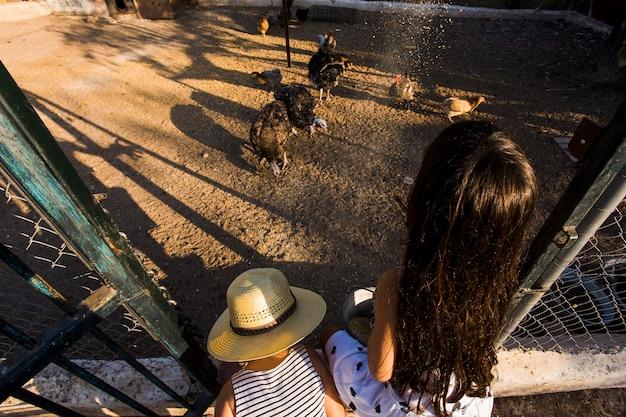 農場の鶏に穀物を与えている2人の女の子