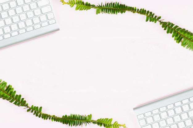 空白の背景に白いキーボードを持つ2つの植物の枝