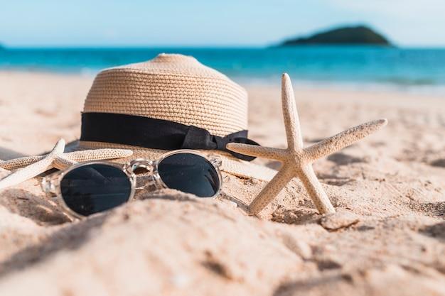 ビーチの砂に帽子を入れた2つの魚介類