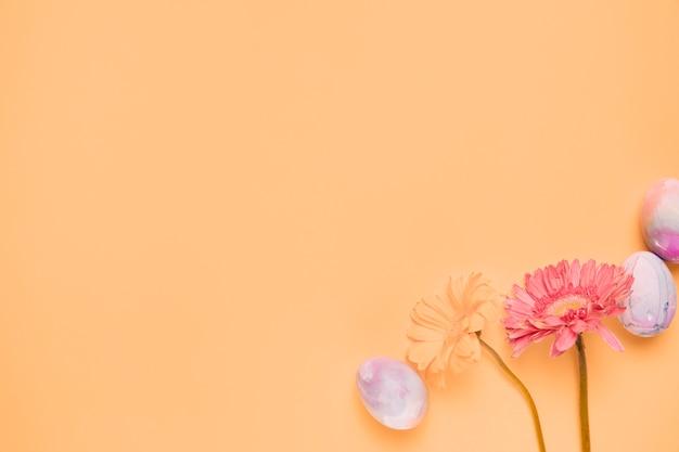 黄色の背景の隅にイースターエッグと2つのガーベラの花