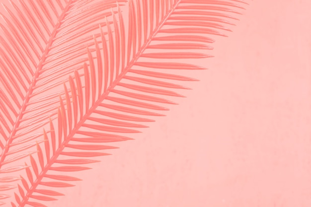 サンゴを背景に描かれた2つのヤシの葉