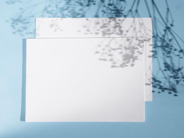 2つの白い空白と枝の影と明るい青の背景