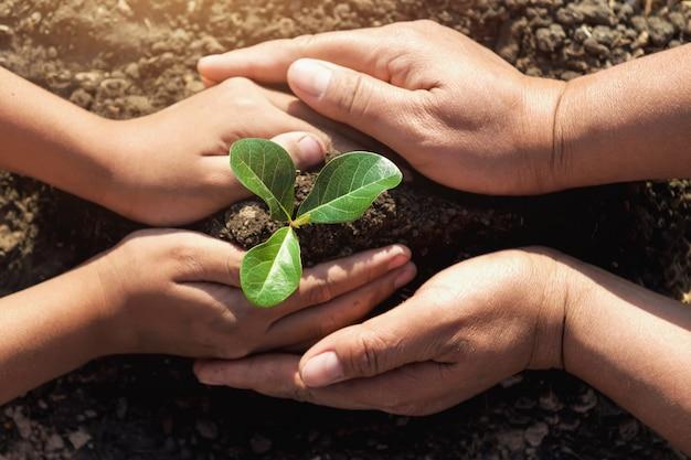 世界を救うために若い木を植えるのを助ける2つの手