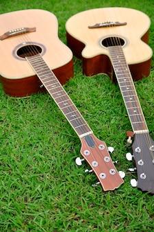 明るい緑の草のテクスチャに2つのギター