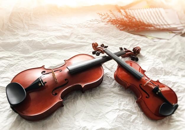 背景に置かれた2つの異なるサイズのバイオリン