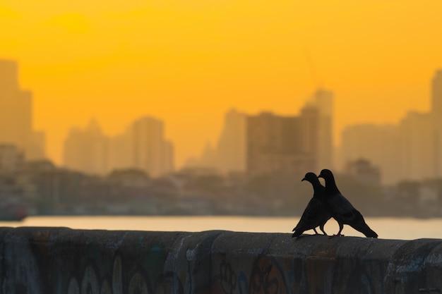 壁に2羽の鳥。