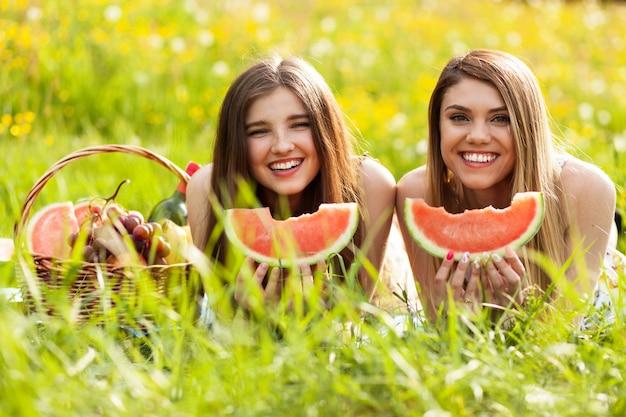ピクニックに2人の美しい若い女性