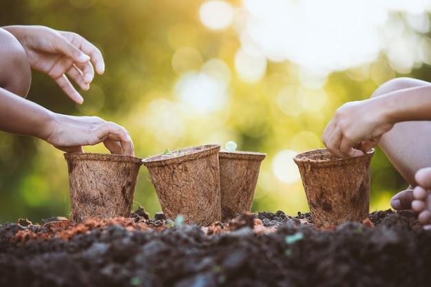 庭で一緒にリサイクル繊維ポットに若い苗を植える2人のアジアの子供の女の子