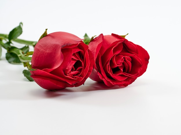 バレンタインカード。 2つの赤いバラ。