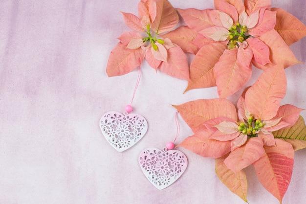 ピンクのポインセチア、2つのピンクの心