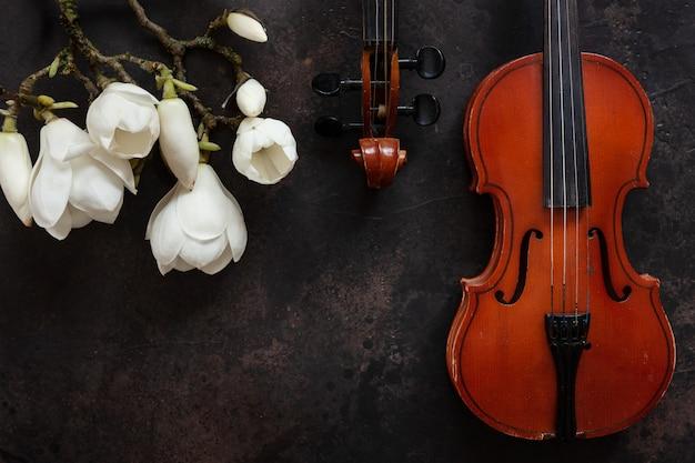 2つの古いバイオリンと開花するモクレンの枝。トップビュー、ダークビンテージのクローズアップ