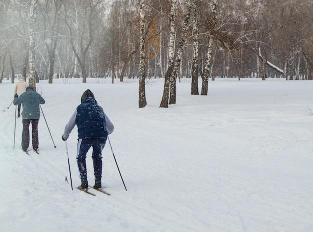 冬の公園でスキーの棒でスキーをする2つの高齢者。アクティブな休息と年金受給者のためのスポーツ、健康的なライフスタイル。背面図