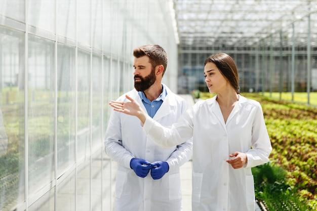 実験室用服の2人の研究者が温室の周りを歩いている